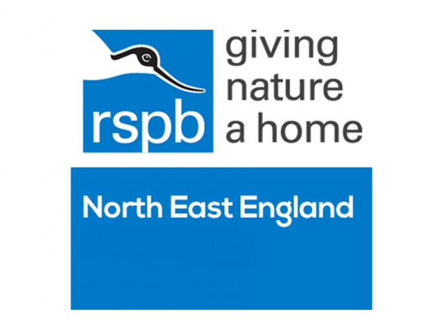 RSPB PR & Communications Project